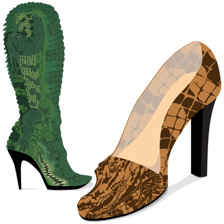 Vector illustration shoes from a skin of crocodile