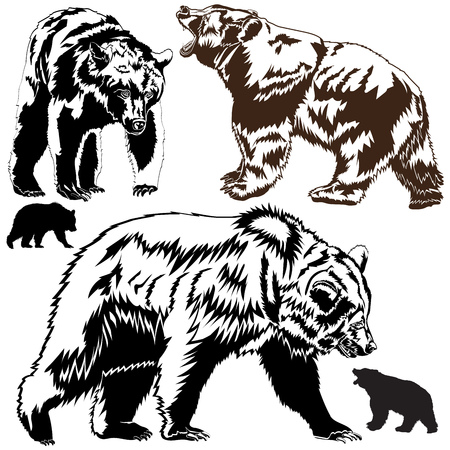 Silhouettes brown bears