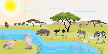 African landscape with animals in the wild vector illustration