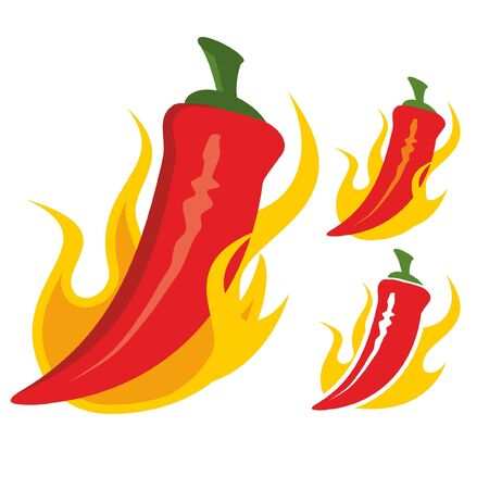 Red chilli pepper with burning hot flames vector illustration