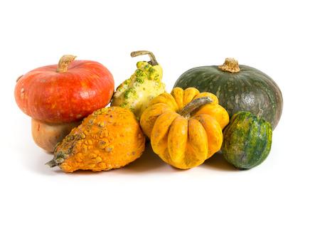 Autumn - Decorative pumpkins on white background
