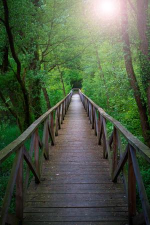 Bridge into the forest, Parco dell' Adda
