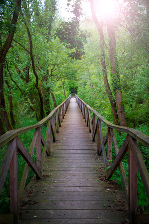 rosy cheeked: Bridge into the forest, Parco dell Adda