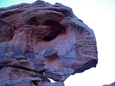 T-Rex rock