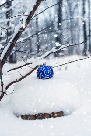winter photos: Christmas toy on a snow-covered tree