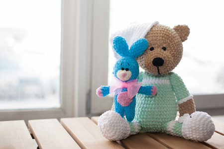 Brown Stuffed Animal Teddy Bear And Small Knitted Blue Rabbit