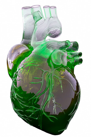 Heart model on white background with green blood.