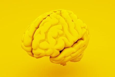 Yellow Human Brain, Anatomical Model. 3D illustration.