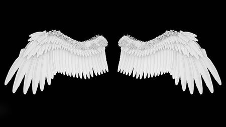 Realistic elegant white angel wings isolated on black background, 3D rendering.