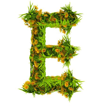 Letter E made of flowers and grass isolated on white. 3d illustration. Foto de archivo
