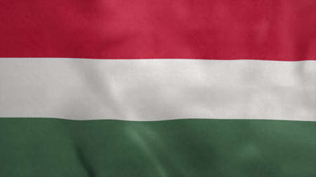National flag of Hungary blowing in the wind. 3d rendering