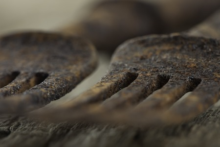 grunge flatware: old rusty forks on a wooden Board close up