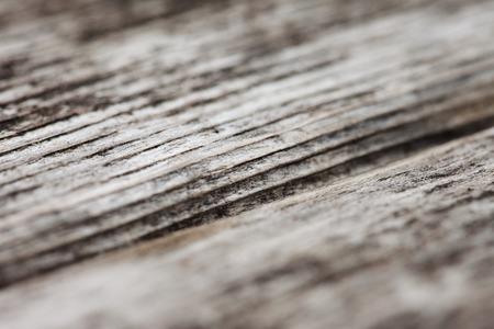 surface closeup: background of old textured wooden surface closeup