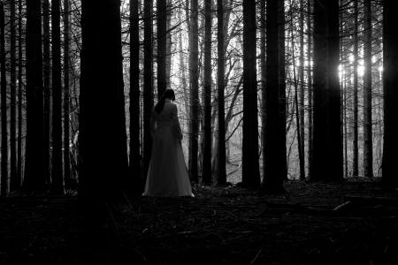 Woman with long black hair in white dress in the spooky dark forest photo