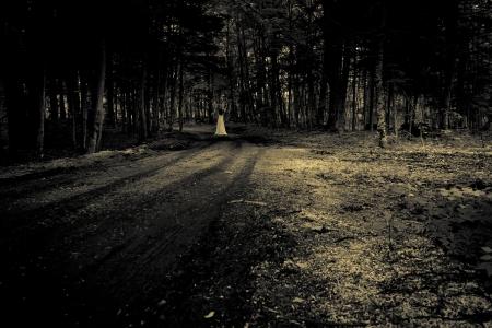 ghost woman: Horror Scene Stock Photo
