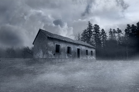 thriller: Abandoned Horror House in the Misty Forest Stock Photo