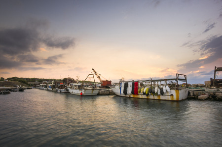 trawl: Fishing boats in harbor
