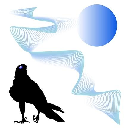 buzzard: Black bird predator aggressive hawk Illustration