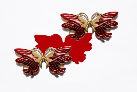 Two Metallic red butterfly isolated on the white  photo