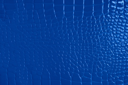 cracklier: Blue skin texture