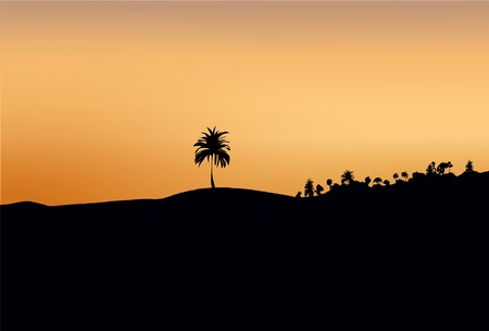 dark silhouette of sand and trees at sunset Stock Photo