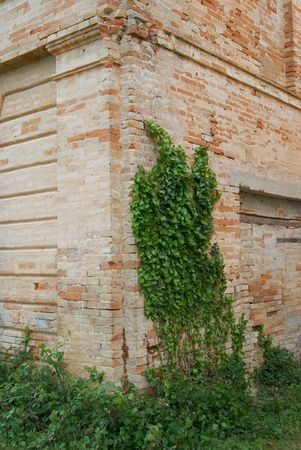 Part of the ancient ruins of ancient house Stock Photo - 13549258