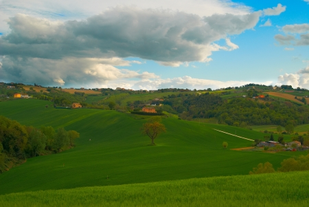 Green field of  golf Italy Stock Photo - 13910424