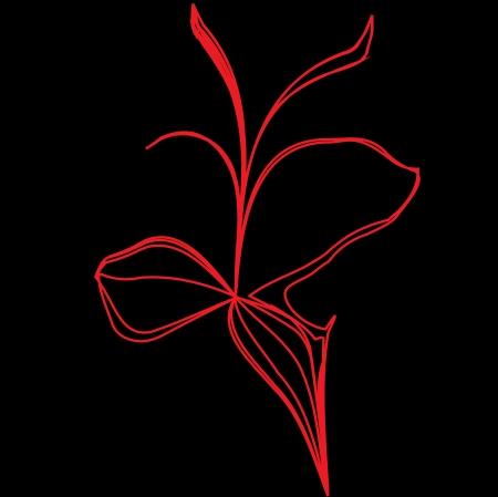 red flower illustration on black