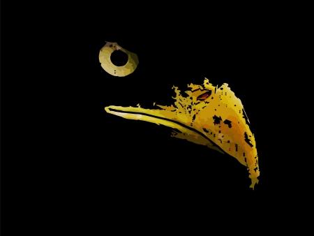 Grafische schets van silhouet roofdier adelaar