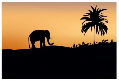 dark silhouette of elephant and trees at sunset Vector