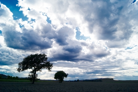 Grim rural landscape dark clouds  Stock Photo - 15913656