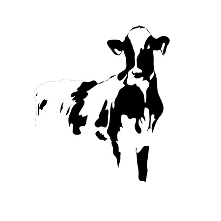 Portrait big black and white cow vector Vector