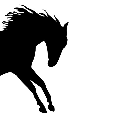 free riding: horse fine vector silhouette black  Illustration