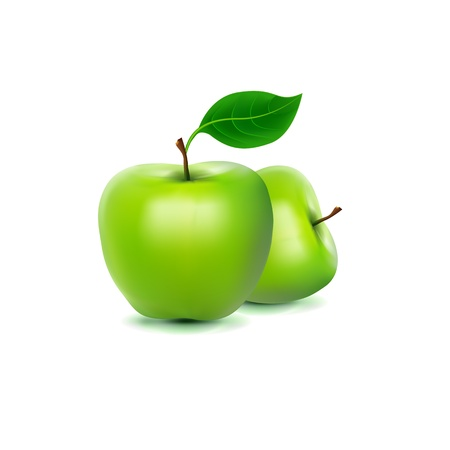 Photo-realistic image of green fresh apple Stock Vector - 17144031