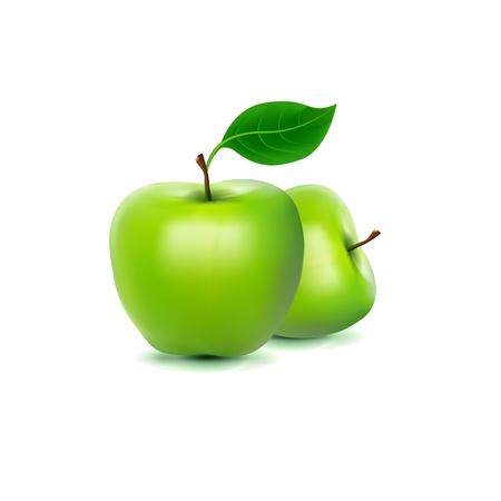 Photo-realistic image of green fresh apple Stock Vector - 17144031