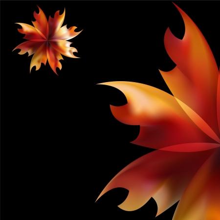 Rose petal Fire flaming flower on black background