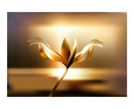 Rose pétalo de flor fuego llameante en color dorado atardecer