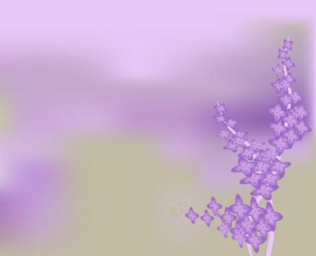 bush mesh: Purple lilac bush blooming