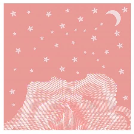 Rose petal flower  shell on pink golden background bokeh Vector