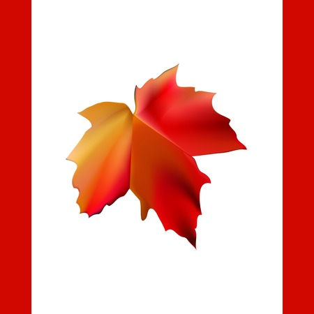 autumn maple leaf in form of flag Canada Vector