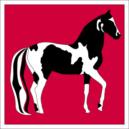 Silhouette beautiful Arabian horse Vector