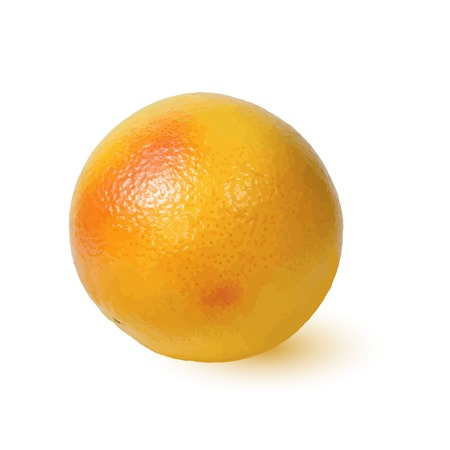 grapefruit: Ripe Golden appetizing grapefruit. Macro isolated over white.