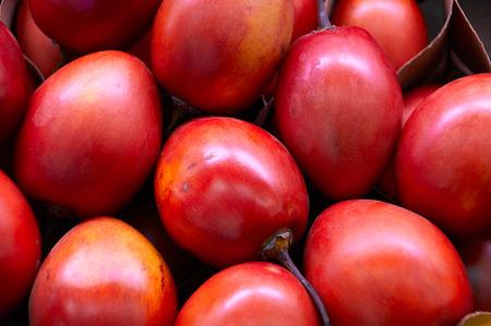 tamarillo: New Zealand evergreen tree fruit vegetable, Tamarillo Stock Photo