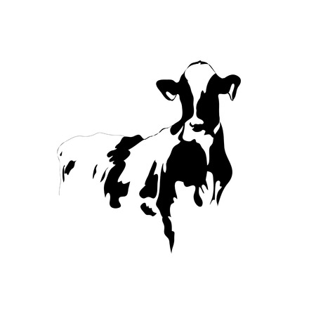 cows grazing: Abstraknie picture black and white cow on a white background