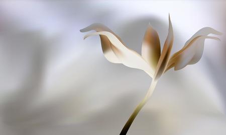 petal: Rose petal Fire flaming flower on Brown golden sunset Illustration