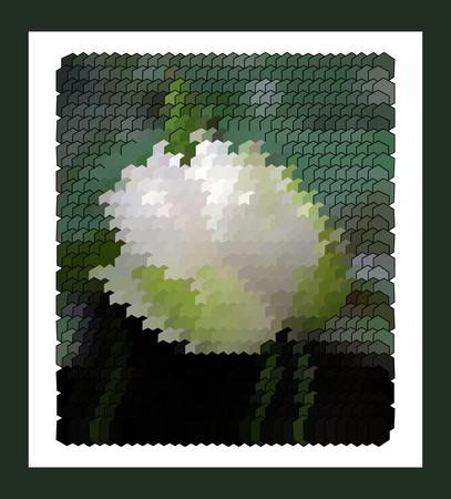 rose blanche: Moderne art abstrait blanc rose vif dans un cadre noir