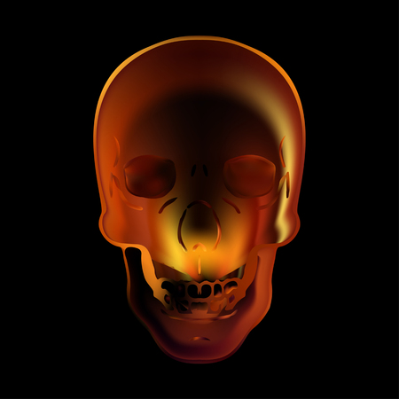 fire skull: Image illustration fire skull on a black background Illustration