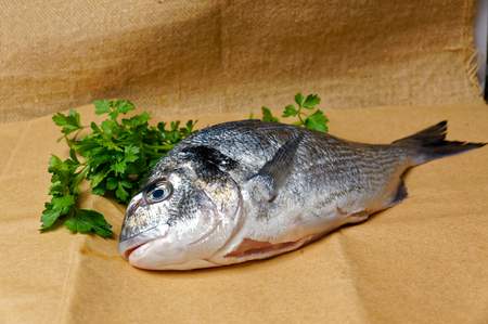 gutted: Large fish sea bream orata gutted on the on brown paper