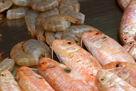 goatfish: mullet, perch and shrimps on the tabel of fish market Stock Photo