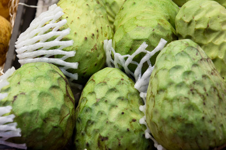 scaly custard apple: Cherimoya green exotic fruit called a sugar apple. The flesh consists of segments